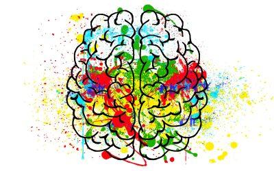Wie das Gehirn unser Übergewicht beeinflusst